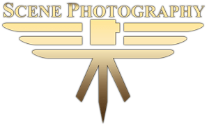 Scene Photography Logo